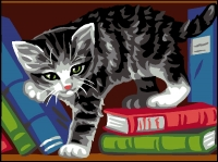 Royal Paris Starter Tapestry/Needlepoint Kit � Cat on Book Shelf