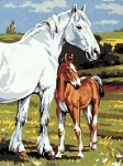 Royal Paris Starter Tapestry/Needlepoint Kit - Mare and Foal
