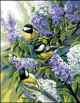 Royal Paris Tapestry/Needlepoint - Bluetits