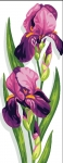 Royal Paris Tapestry/Needlepoint - Irises