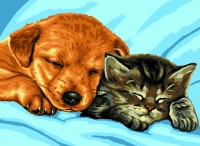Royal Paris Tapestry/Needlepoint Canvas - Cuddles, Puppy & Kitten