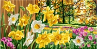 Royal Paris Tapestry/Needlepoint Canvas � Daffodils