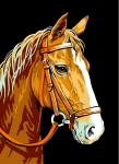 Royal Paris Tapestry/Needlepoint Canvas - Horse (Cheval)