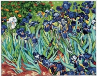 Royal Paris Tapestry/Needlepoint Canvas - Irises Canvas by Van Gogh