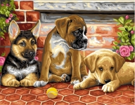 Royal Paris Tapestry/Needlepoint Canvas � The Puppies